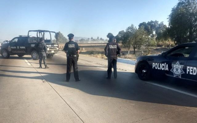 Asesinan a un policía diario en México; suman 528 desde 2018 - Elementos de la Policía Federal. Foto de Notimex
