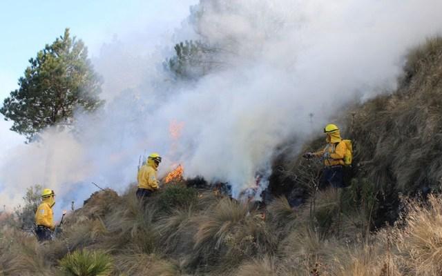 Suman cinco mil incendios forestales durante 2019 en México - Incendio forestal. Foto de Conafor