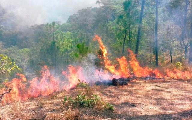 Siete incendios activos en Oaxaca - incendios oaxaca