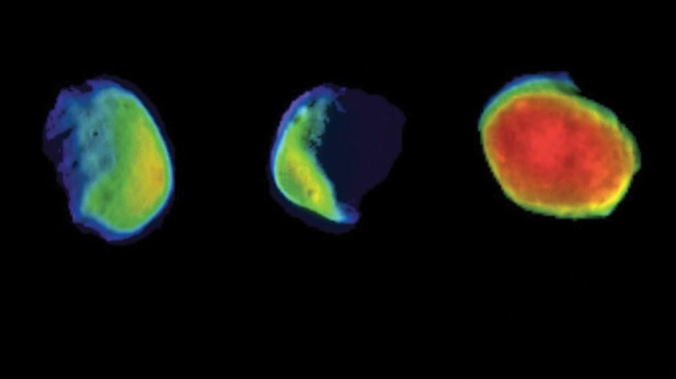 NASA obtiene imágenes de Luna de Marte - imágenes