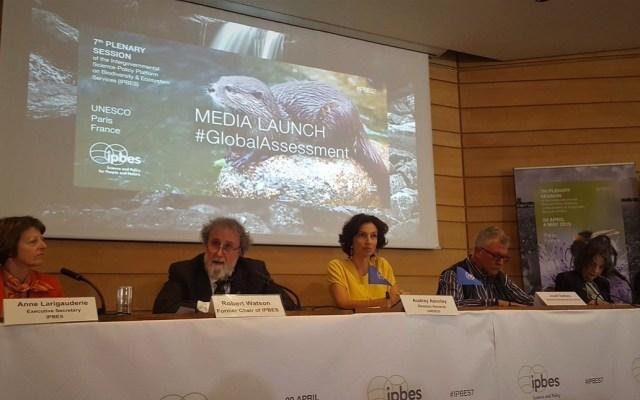 Presentación del informe del IPBES. Foto de @IPBES