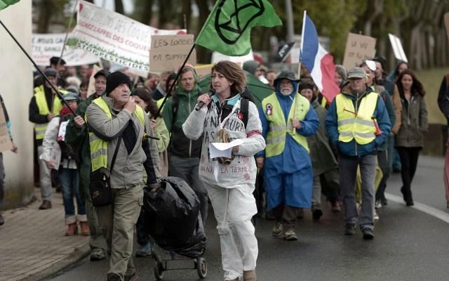 Crecen protestas de activistas ambientales en Francia - Alrededor de 150 activistas participan en manifestación contra Bayer-Monsanto y otros gigantes agroquímicos en Peyrehorade, en el suroeste de Francia. Foto de IROZ GAIZKA / AFP.
