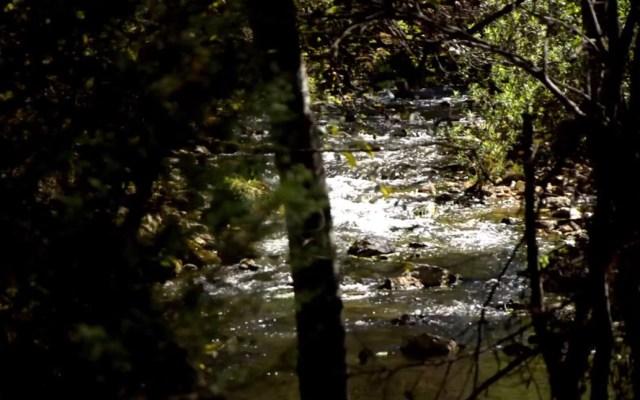 Conagua deberá revelar resultados de análisis a cuenca de Chiapas - Río Fogótico de la cuenca del Valle del Jovel. Foto de Comité de Cuenca Valle de Jovel