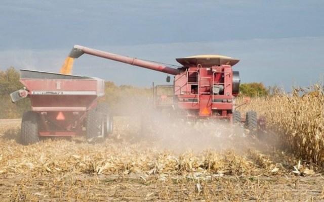 Productores agrícolas urgen al Congreso de EE.UU. a aprobar el T-MEC - t-mec productores agrícolas congreso (1)