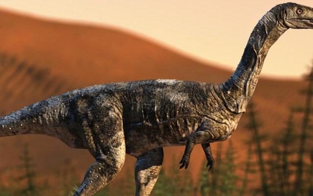 Descubren nueva especie de dinosaurio carnívoro en Brasil - Foto de Universidad de Sao Paulo