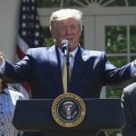 """""""México está haciendo un muy buen trabajo"""" al detener migrantes: Trump - Foto de AFP"""