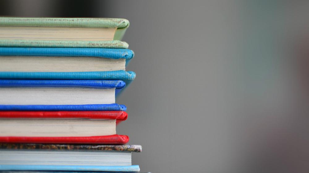 Sin consenso para nombramientos en Organismo para la Mejora Continua de la Educación. Noticias en tiempo real
