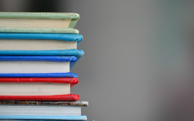 Sin consenso para nombramientos en Organismo para la Mejora Continua de la Educación - Foto de Kimberly Farmer para Unsplash