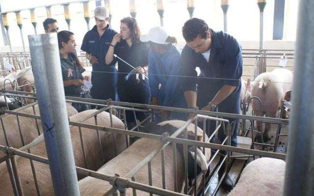 Asaltan a estudiantes de veterinaria de la UNAM en Jilotepec - Veterinaria CEIEPP FMVZ UNAM alumnos veterinaria Jilotepec