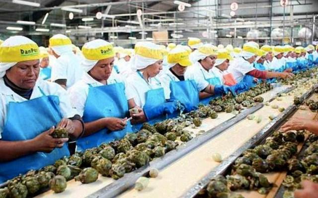 Se desploma 10.9 por ciento actividad económica en Tabasco - actividad económica estatal tabasco