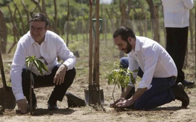 El Salvador y México inauguran proyecto para frenar migración de salvadoreños - Foto de @m_ebrard