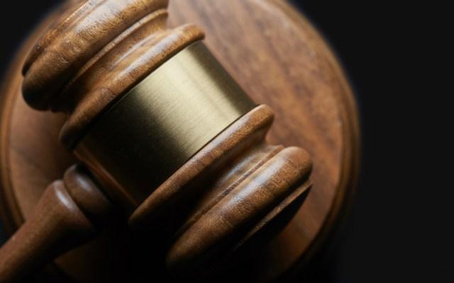 Corte invalida decreto para cultivo de transgénicos en Yucatán - Foto de Bill Oxford para Unsplash