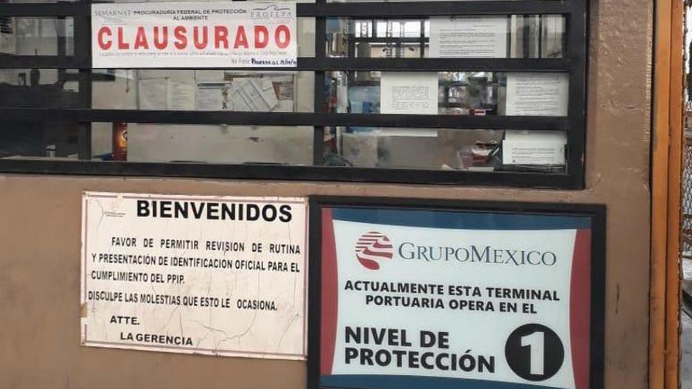 Profepa clausura terminal de Grupo México en Guaymas. Noticias en tiempo real