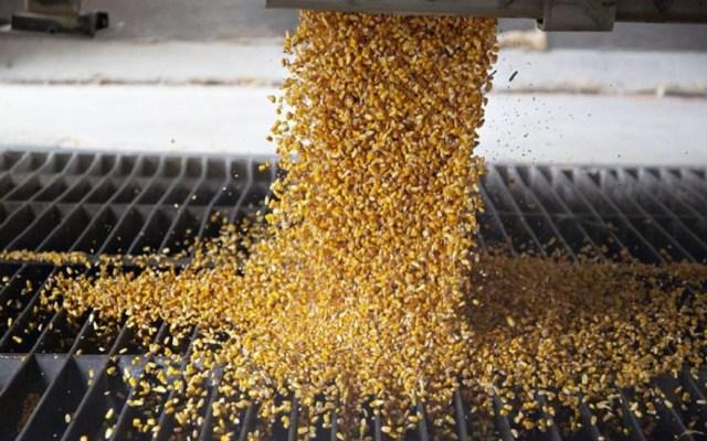 Inseguridad rebasa a productores de comida para animales - Alimento para animales. Foto de Conafab