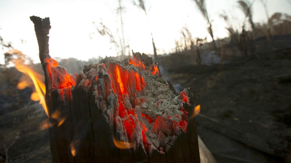 Brasil rechazó ayuda de Canadá para combatir incendios en la Amazonía