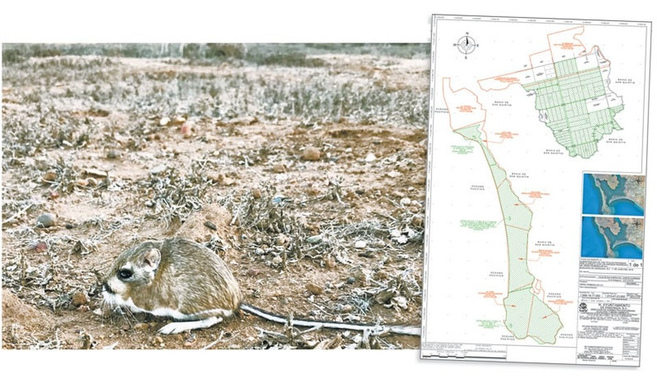 Sedatu subastó dos áreas naturales protegidas en 127 mil pesos - áreas naturales baja california sedatu rosario robles