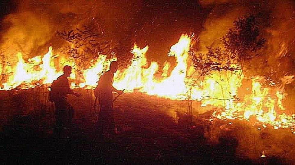 DiCaprio responde a Bolsonaro; niega financiar incendios en Amazonia - Bomberos combatiendo incendio de la Amazonía en Rio Branco. Foto de EFE