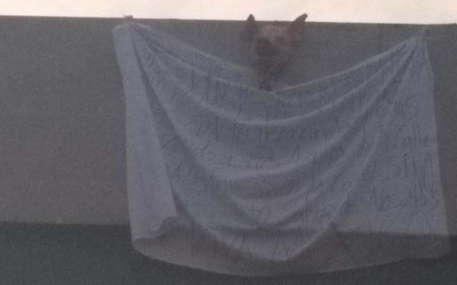Amenazan a director de reclusorios de CDMX con manta en Ermita Iztapalapa - Cabeza Cerdo Ermita Iztapalapa amenaza manta