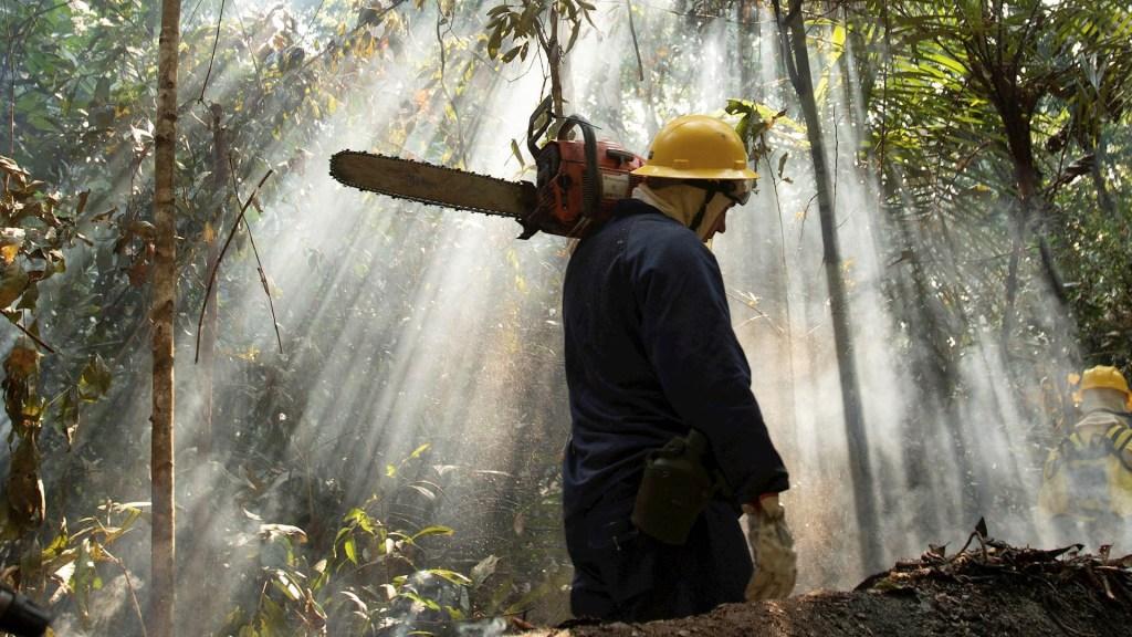 Brasil arremete contra propuesta de internacionalizar la Amazonia - Incendios amazonia Amazonas Brasil bomberos