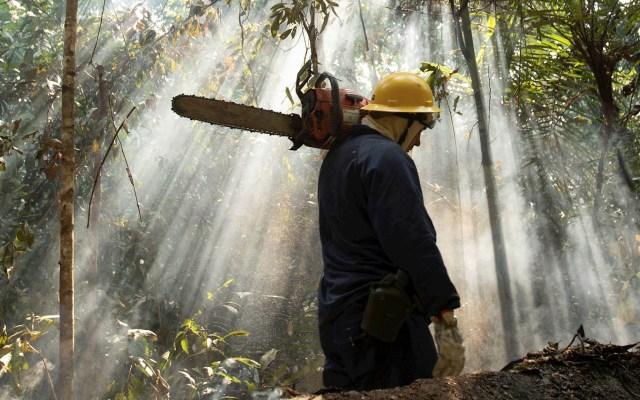 Brasil asegura que hay una reducción de brotes de incendio en Amazonia - Incendios amazonia Amazonas Brasil bomberos