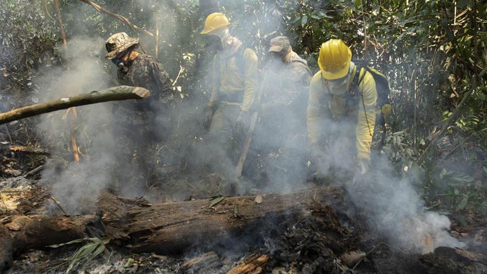 Despega primer avión financiado por G7 contra incendios en la Amazonia - incendios amazonia
