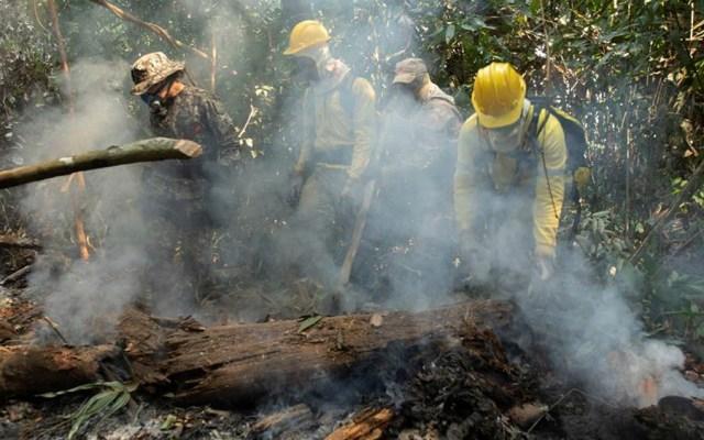 Militares brasileños continuarán en la Amazonia hasta octubre - incendios amazonia