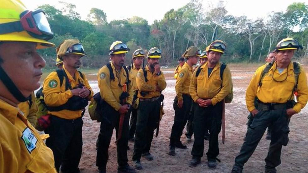 Controlan en 95 por ciento incendio forestal en Sian Ka'an - incendios forestales controlados quintana roo