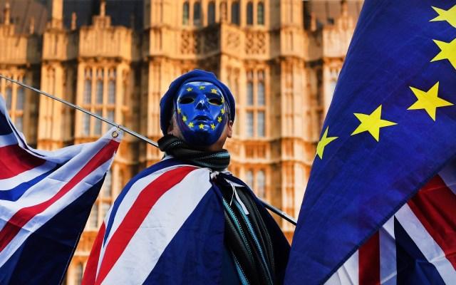 Reino Unido intensificará negociaciones con la UE para el Brexit - Manifestante contra el Brexit. Foto de EFE