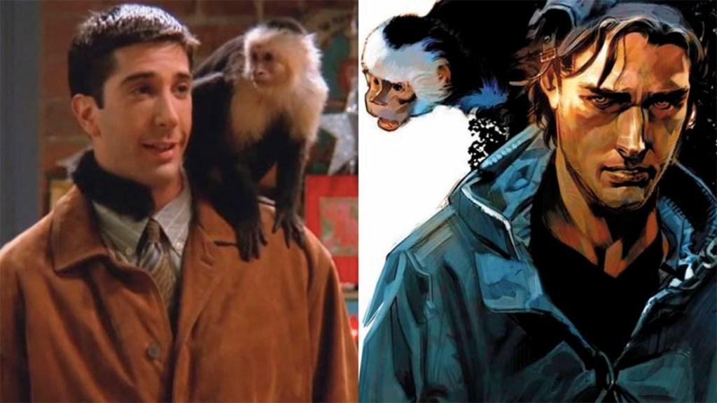 """Regresa a la televisión Marcel, el mono de """"Friends"""" - marcel el mono de friends regresa a la televisión"""