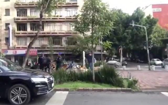 Policías forcejean con cuidadores de perros en la alcaldía Cuauhtémoc - policías cuidadores de perros