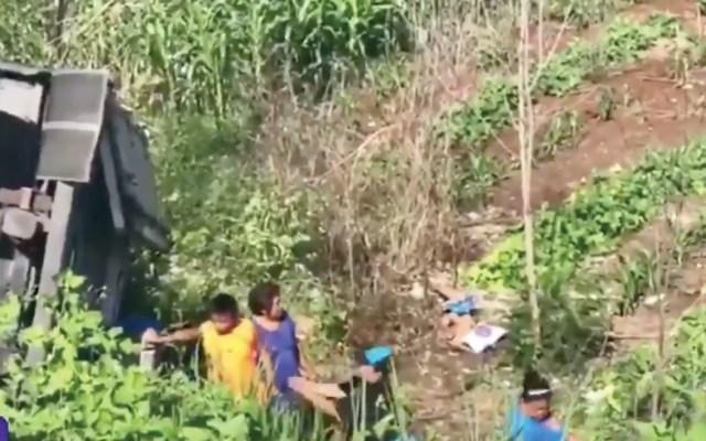#Video Rapiña en camión de leche que volcó en Campeche - Captura de pantalla