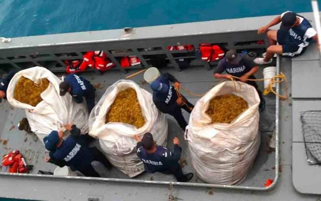 En octubre estará listo el primer buque recolector de sargazo: Semar - sargazo