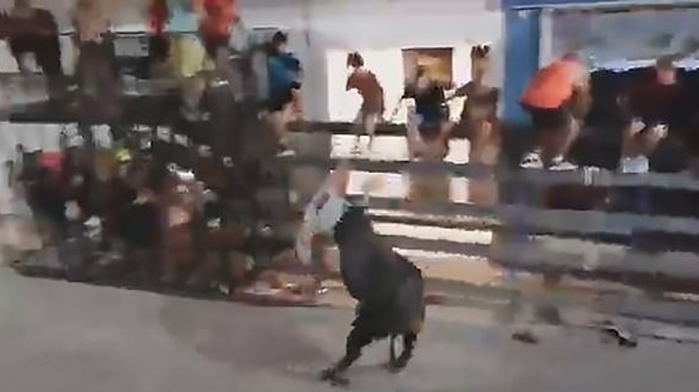 #Video Toro arremete contra turista francés en festival español - toro