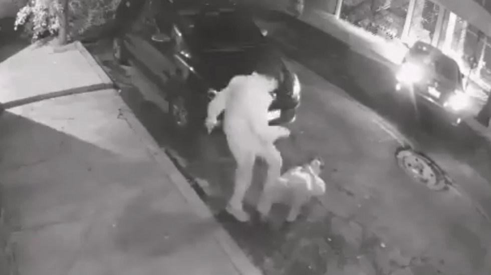 #Video Patean a hombre para robarle el auto y la cartera en la GAM - Asaltante patea a víctima para robarle el auto. Captura de pantalla