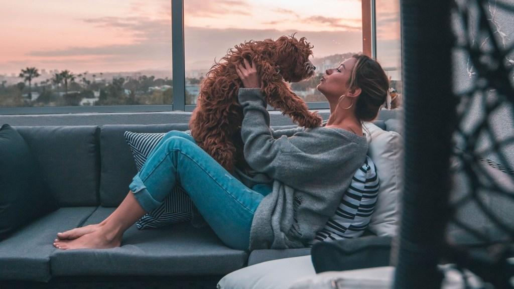 Lamidos de mascotas en la cara pueden perjudicar la salud - Besos con mascotas. Foto de Roberto Nickson / Unsplash