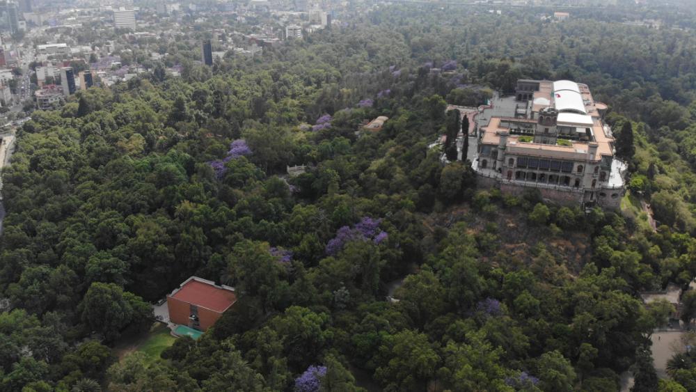 Otorgan Premio Oro a Bosque de Chapultepec - Foto de Notimex
