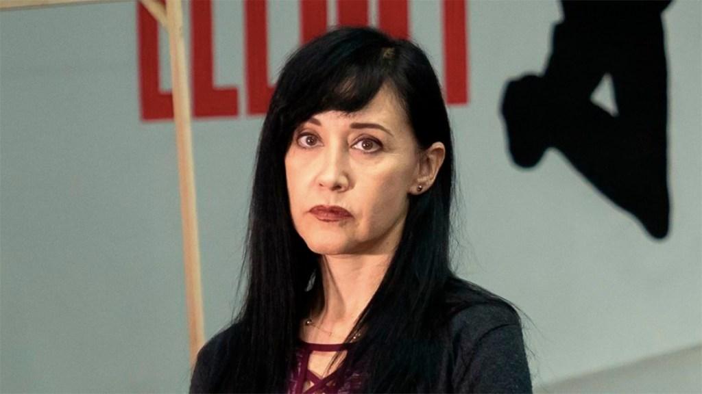 Asaltan a hijo de Susana Zabaleta en Álvaro Obregón - asaltan a punta de pistola a Susana Zabaleta