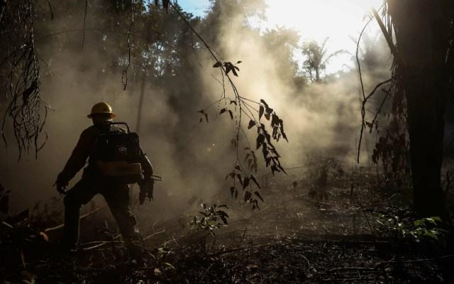 Ratifica Brasil compromiso ambiental en víspera de cumbre climática - Foto de EFE