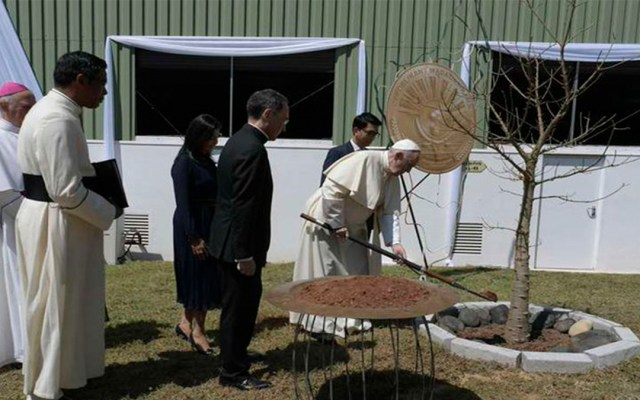 El papa Francisco advierte de los peligros de la deforestación global - papa francisco medio ambiente deforestación