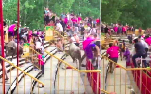 #Video Toro brinca a las gradas y embiste a 19 asistentes en España - toro