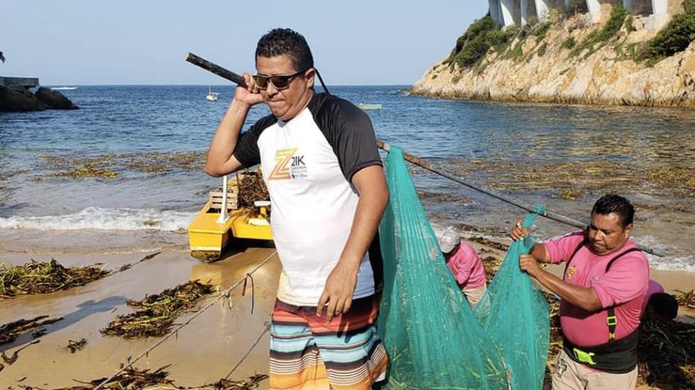 Retiran más de 28 toneladas de lirio acuático en playas de Acapulco - Acapulco limpieza Guerrero