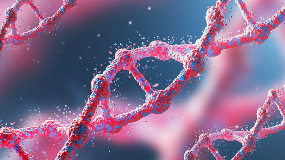 Descubren mecanismo que repara daños en el ADN por algunas quimioterapias - ADN