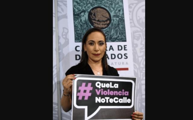 Pese a disculpa de Noroña, continuaré con acciones legales: Adriana Dávila - Foto de Diputados PAN