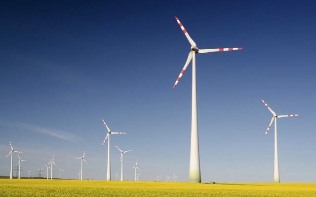 Juez frena acuerdo del Cenace sobre energía renovable - Energía limpia eólica electricidad