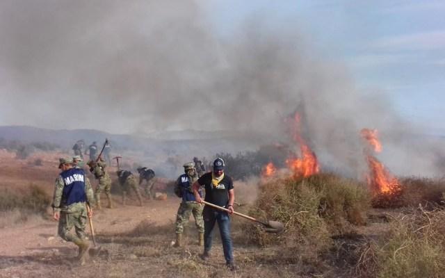Siguen sin clases en Tijuana, Tecate y Rosarito por incendios - Incendios forestales