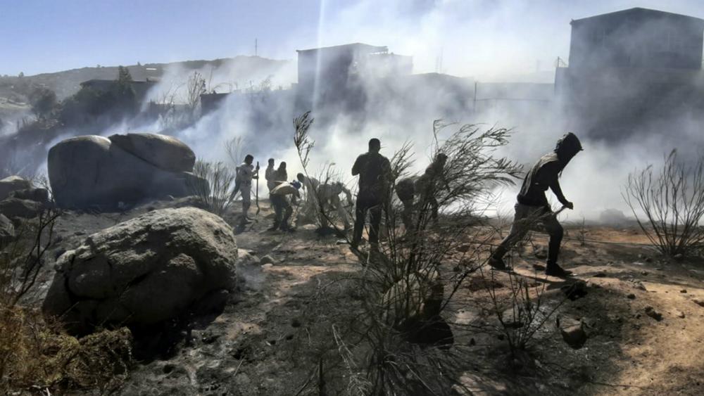 Sigue combate a incendio forestal en Baja California - Foto de Notimex