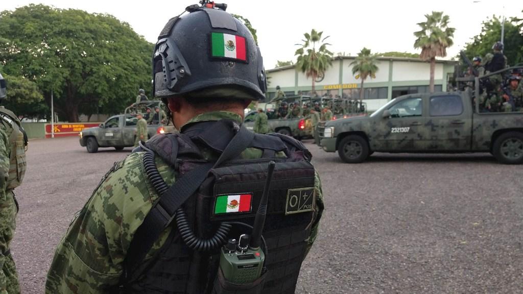 Aseguran más de 50 mil plantas de mariguana en Michoacán - Militares México fuerzas Sedena Soldados