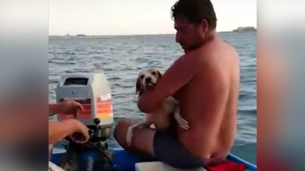 #Video Rescatan a perro de morir ahogado en medio del mar en BCS - Perro rescatado de BCS