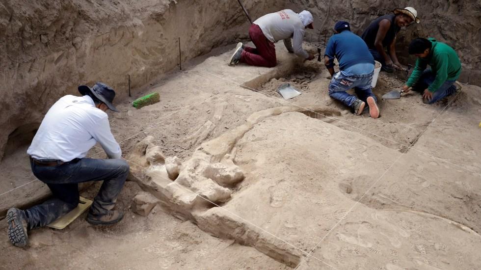 Hallan en Puebla huesos y colmillos de mastodonte - Restos de mastodonte hallados en Puebla. Foto de EFE