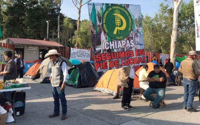 Campesinos instalan plantón en la Cámara de Diputados; exigen mayor presupuesto - campesinos diputados
